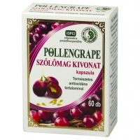 Pollengrape kapszula 330 mg DR.CHEN (Pingvin Product)
