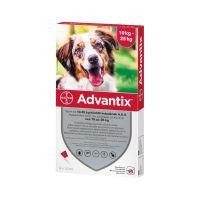 Advantix spot on 10-25 kg közötti kutyáknak A.U.V. (4x1,0ml)