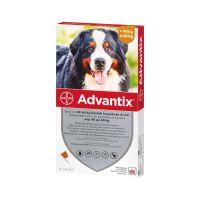 Advantix spot on 40-60 kg közötti kutyáknak A.U.V. (4x6,0ml)