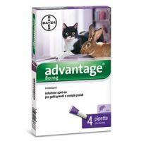 Advantage 80 macska nagy 0,8ml a.u.v.