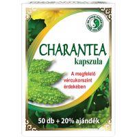 Charan tea kapszula DR.CHEN (Pingvin Product)