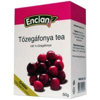 Encian Tőzegáfonya tea
