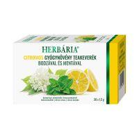 Herbária Citromos Gyógynövény filteres tea
