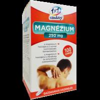1x1 Vitaday Magnézium 250 mg filmtabletta