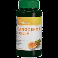 Vitaking Ganoderma 400 mg kapszula (Pingvin Product)