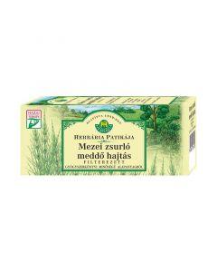 Herbária Mezei zsurló meddő hajtás filteres tea