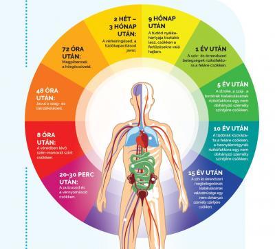Mi történik a testeddel ha leteszed a cigarettát?
