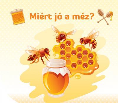 Május 20-a méhek világnapja