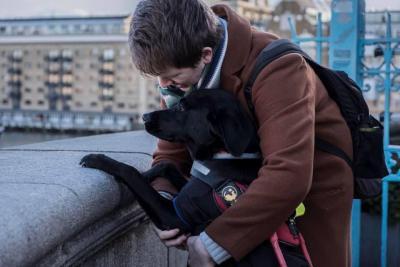 Fülöp vagyok, a híres vakvezető kutya