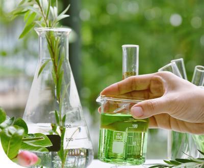 Gyógynövények daganatterápia alatt: haszon vagy kockázat?