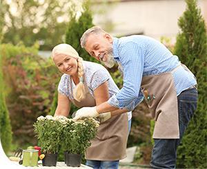 Hangulatjavító kertészkedés
